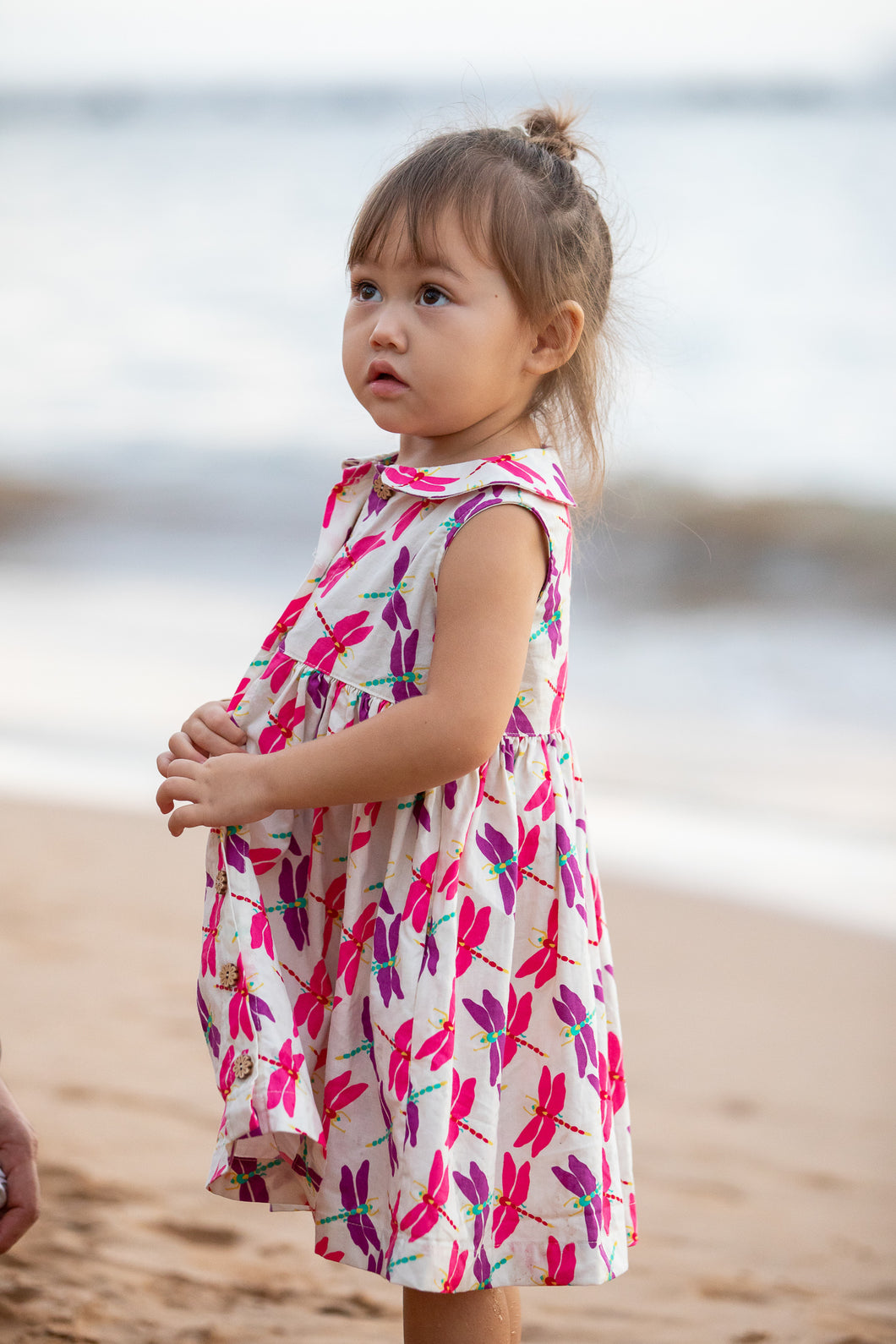 Children's dress in dragonfly print.