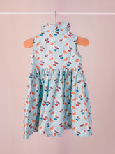 Load image into Gallery viewer, Suzie dress in Pelicans