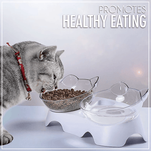Anti-Vomiting Elevated Cat Bowl