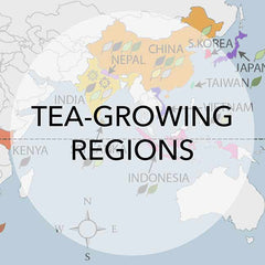 tea-growing regions