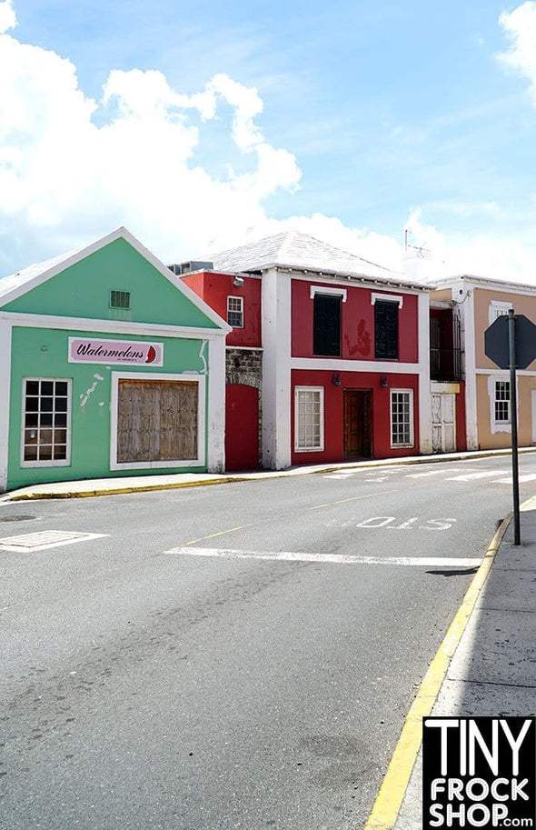 A-153 (W) Barbie Photography Backdrop - Wide - Bermuda Town