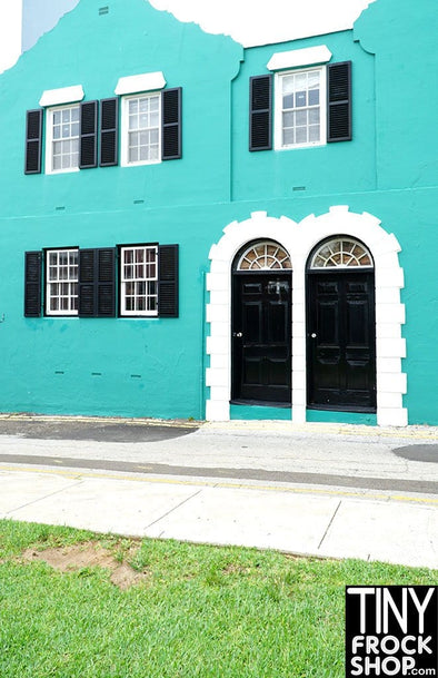 A-158 (W) Barbie Photography Backdrop - Standard- Turquoise House