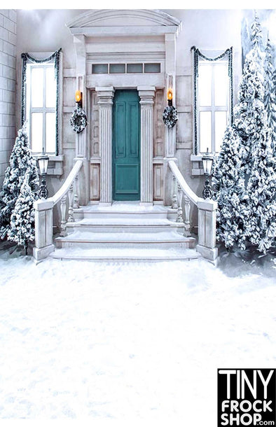 CM-5890 Barbie Photography Background - Standard -  Snowy Entrance