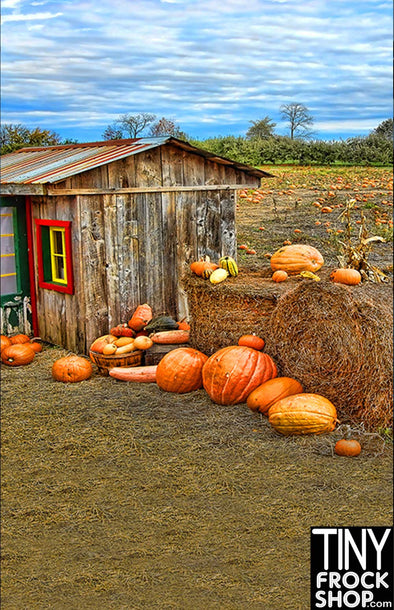Barbie Photography Backdrop - Standard - Pumpkin Farm HA-179