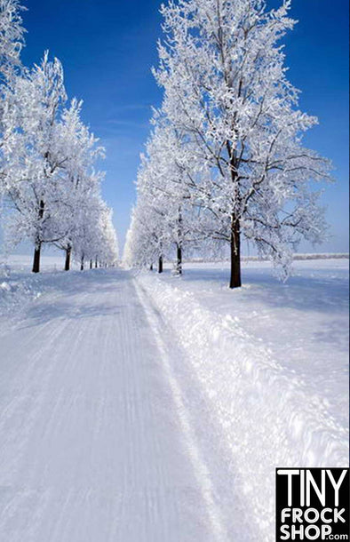 HG-223 Barbie Photography Backdrop - Standard - Winter Road