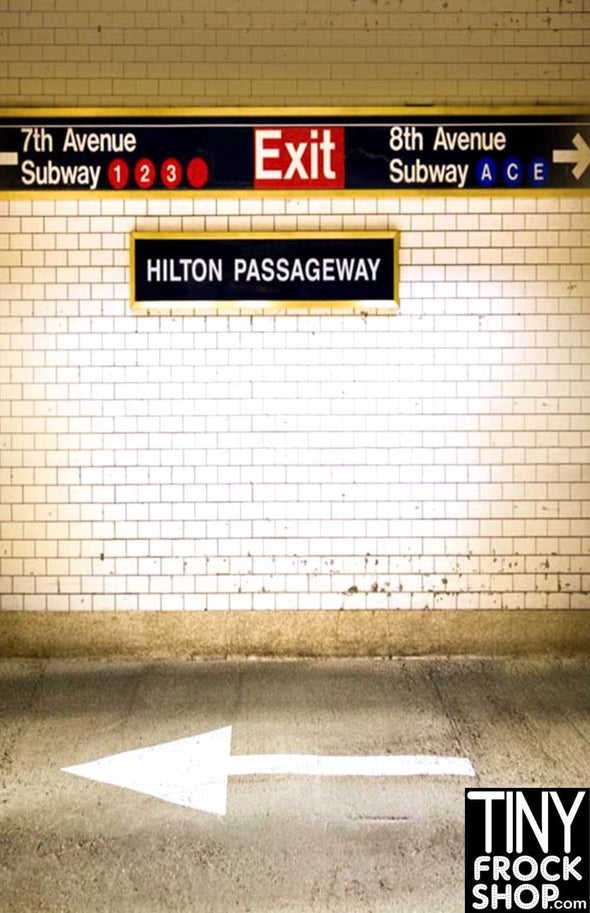 S-1116 Barbie Photography Background - Standard - N. Y. Subway