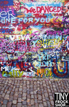 Barbie Photography Backdrop - Wide - Bricked Graffiti S-2591