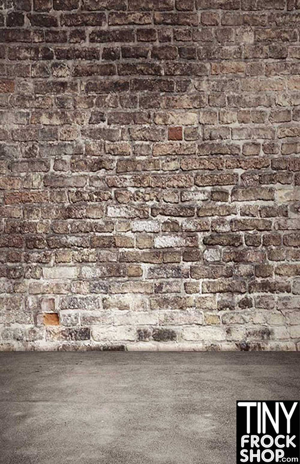 Barbie Photography Backdrop - Standard - Alley Wall S-2966