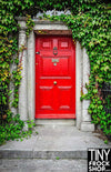 S-3063 Barbie Photography Backdrop - Wide - Red Door