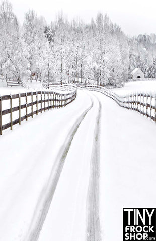 Barbie Photography Background - Snowy Path ST-439