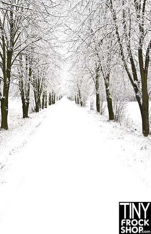 Barbie Photography Background - Winter Roadway ST-585