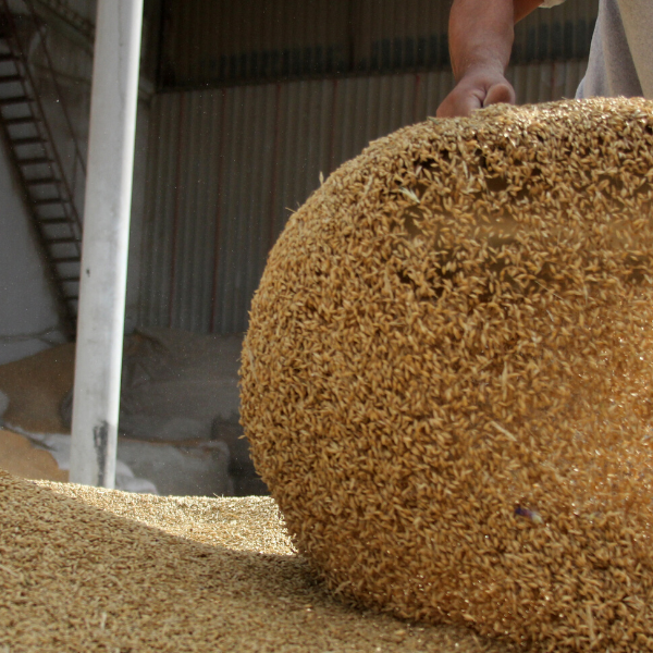 Summer Feed Storage – What You Need to Know
