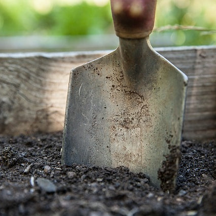 Tips for April Gardening