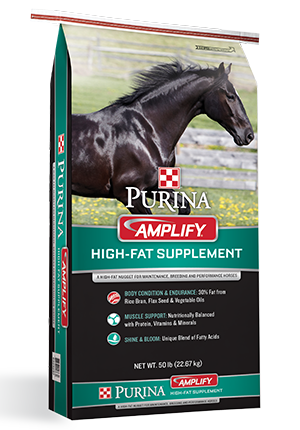 PURINA AMPLIFY EQUINE SUPPLEMENT