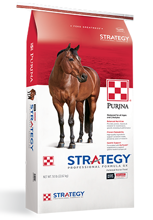 PURINA STRATEGY-GX