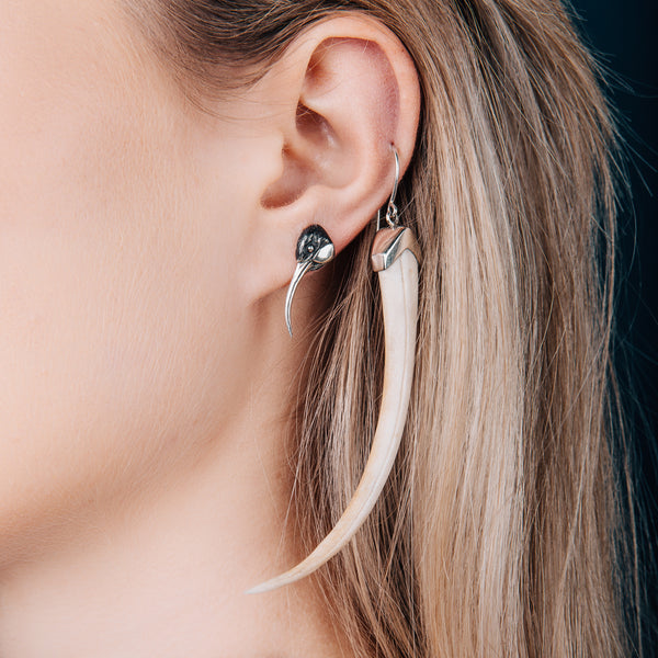 Epic Huia Beak Earrings
