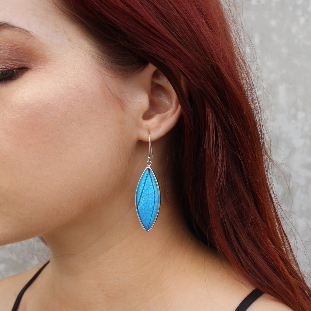 Morpho Butterfly Wing earrings