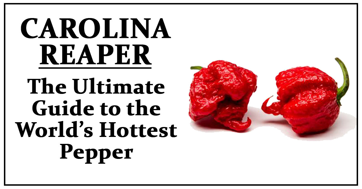 The Carolina Reaper: The Ultimate Guide to the World's Hottest Pepper