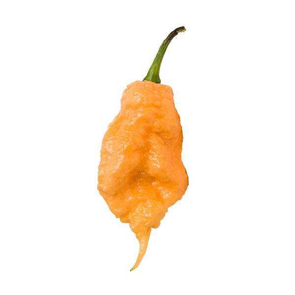 Peach Carolina Reaper Seeds Hot Pepper Seeds Sonoran Spice