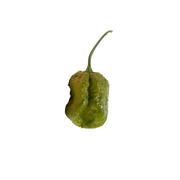 Pepper B Seeds Hot Pepper Seeds Sonoran Spice