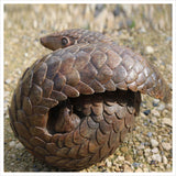 Pangolin by Adam binder
