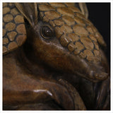 Armadillo by Adam binder