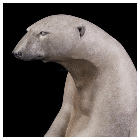 Sitting Polar Bear by Adam Binder