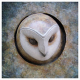 Barn Owl Plaque by Adam Binder