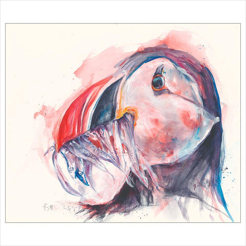 Puffin by Bev Horsley