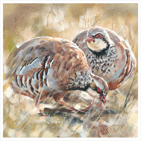 Partridge Pair by Debbie Boon
