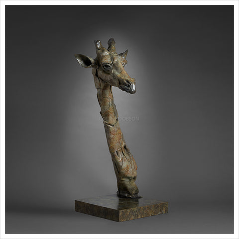 Giraffe Head by Fred Gordon