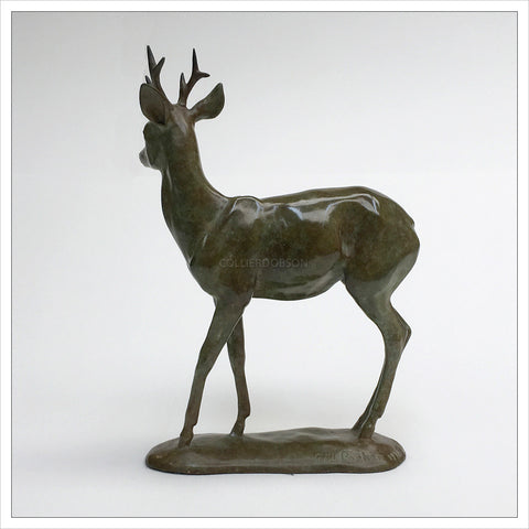 Roe Buck by Gill Parker