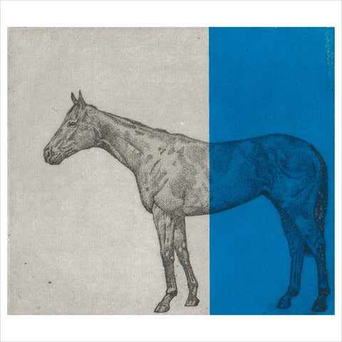 Little Horse Study - Blue by Guy Allen