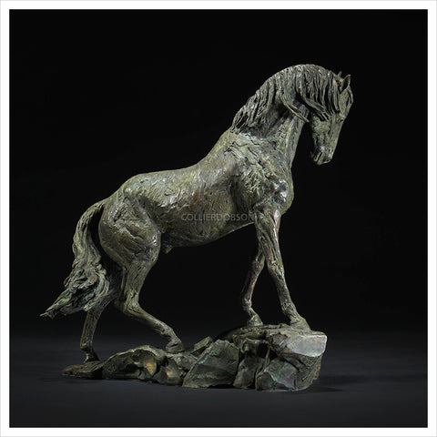 Goodman's Andalusian Stallion - Scale 1:7 by Hamish Mackie