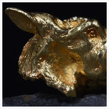 Primitive Horse Head - 24 Carat Gold Plated by Hamish Mackie