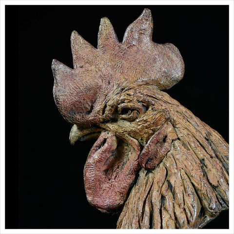 Chicken Head by Hamish Mackie