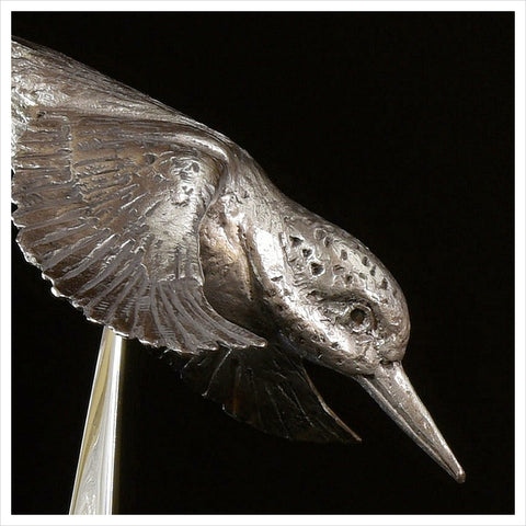 Kingfisher - Hallmarked Silver by Hamish Mackie