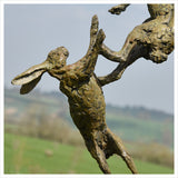 Hares by Hamish Mackie