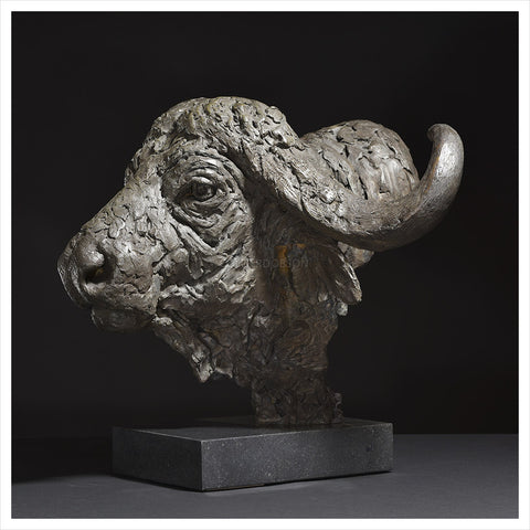 Cape Buffalo Head by Hamish Mackie