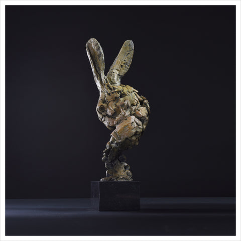 Hare Head 2018 by Hamish Mackie