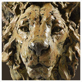 Lion Head by Hamish Mackie