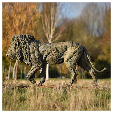 Lion Life Size by Hamish Mackie