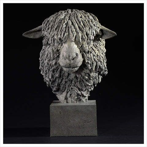 Cotswold Ram Head by Hamish Mackie