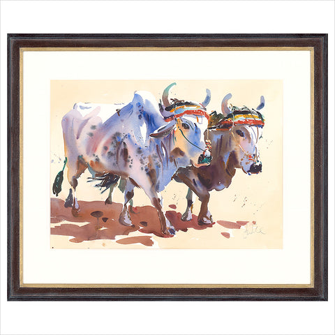 White Oxen by Jake Winkle