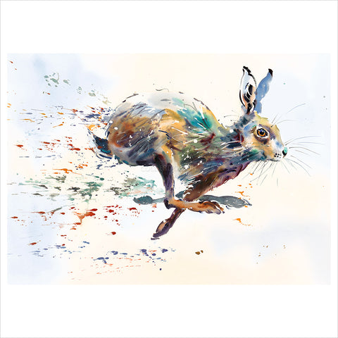 Hare Spray by Jake Winkle