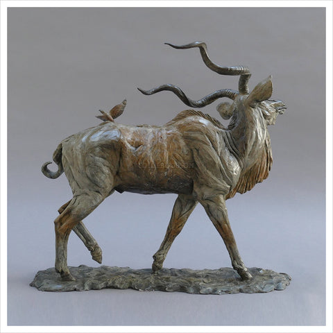 Kudu by William Montgomery