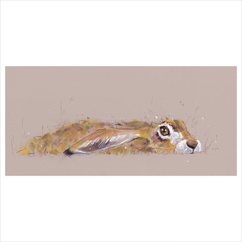 Hideaway Hare by Nicky Litchfield
