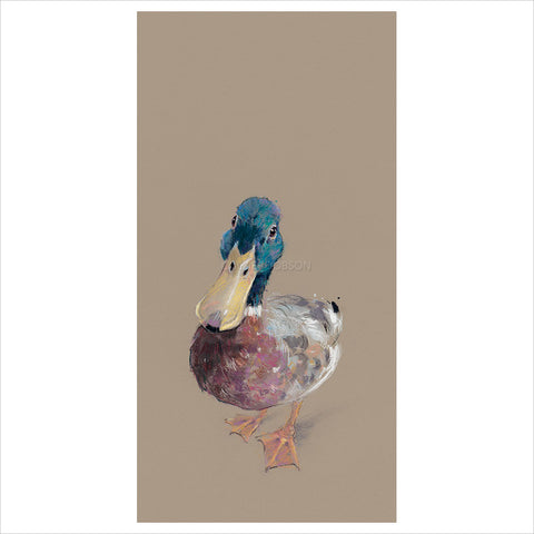 Lord Love a Duck by Nicky Litchfield
