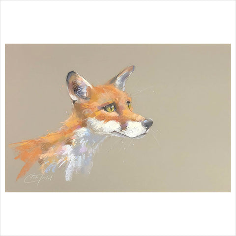 Sly Fox by Nicky Litchfield