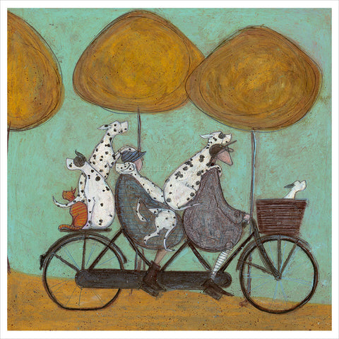 How Many Dalmatians Fit on a Bicycle? by Sam Toft